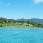 Samanvaya View