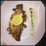 chefs speciality haddock
