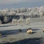 Foto de Millmoor Farm