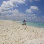 stunning sandbank