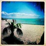 spiaggia vicinissima a casa coral