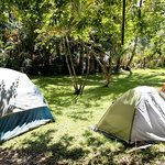 A couple of tents in the yard