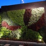 Plant Mural (NIghttime)