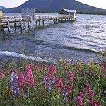 Beautiful Clear Lake-67 miles around it.