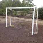 The 'goal'