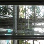 vista do nosso quarto, janelas imundas e andaimes
