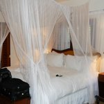 plantation room