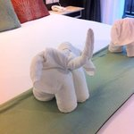 cute towel elephants