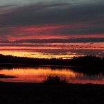 deer lake sunset