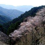 Okusenbon - not worth the hike