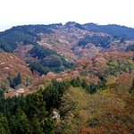 view from yoshimizu shrine -- note the trees near the peak are still pink and in full bloom