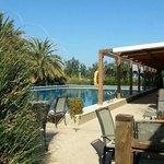 pool and bar restaurant