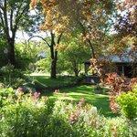 Braeside garden