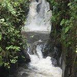 Rio Zamora: Waterfall at around 1500 m a.s.l.