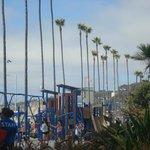 juegos, palmeras y playa!