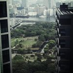view from the 29th floor