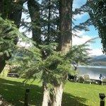 Lugar de descanso con reposeras a orillas del lago