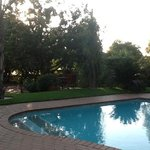 poolside at the Clairesof Sandton