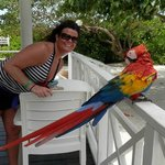 My wife and the parrot residing at the bar by the nude beach.