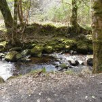 By the Glenary Stream/River along the long route to the castle
