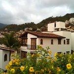 Beautiful Selva Romantica