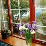 Window, upstairs bedroom