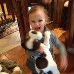 Loving Nikki the toy dog