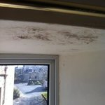 mould in bedroom!