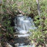 Greenbrier River Trail Waterfall
