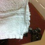 Photo de Oranmore Lodge Hotel