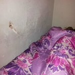 sleeping next to hole in wall -spiders and bugs crawl in out of