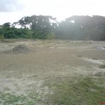 the mud volcanoes