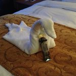 swan and truffles on bed when we came in