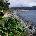 Whiffen Spit from Sooke Harbour House