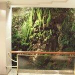 A small waterfall near the elevators