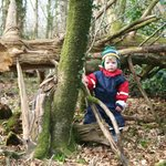Exploring Woods again