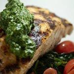 Salmon w/ Arugula Pesto