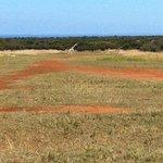 Kunkuru landing strip with crossing giraffe.