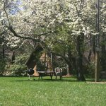 Our beautiful grounds are a great place to enjoy grilling/eating outside