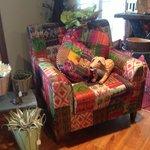 fun, whimsical chair