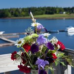 beatiful flowers on the deck