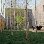 Jiangfu Park Foto
