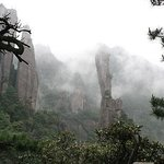 Yunbi Peak Forest Park