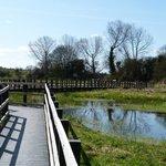 Duckboard walk
