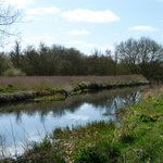 Great Stour River