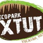 Ecopark XTUT
