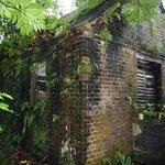 Photo de Fort Haldane