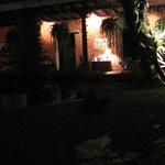 night central garden