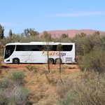 ATT Buses offer frequent transport services to Desert Gardens Hotel; Uluru in the distance!