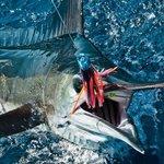 San Carlos Sport Fishing